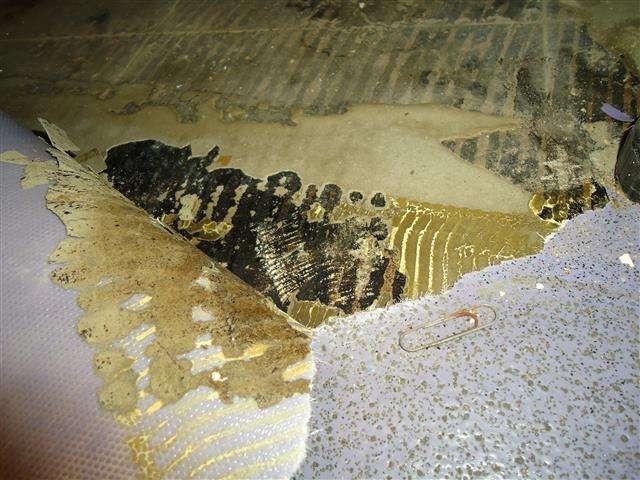 Asbestos adhesive residue to floor