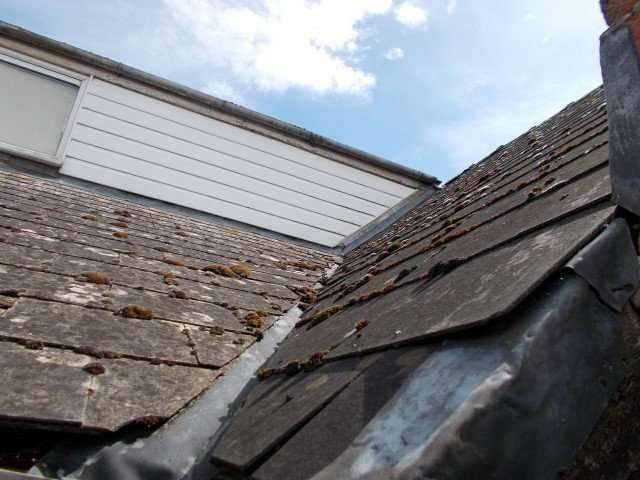 Asbestos cement slates to roof